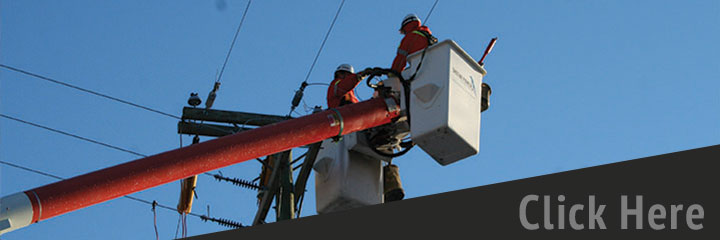 Power Line Maintenance & Electrical Services